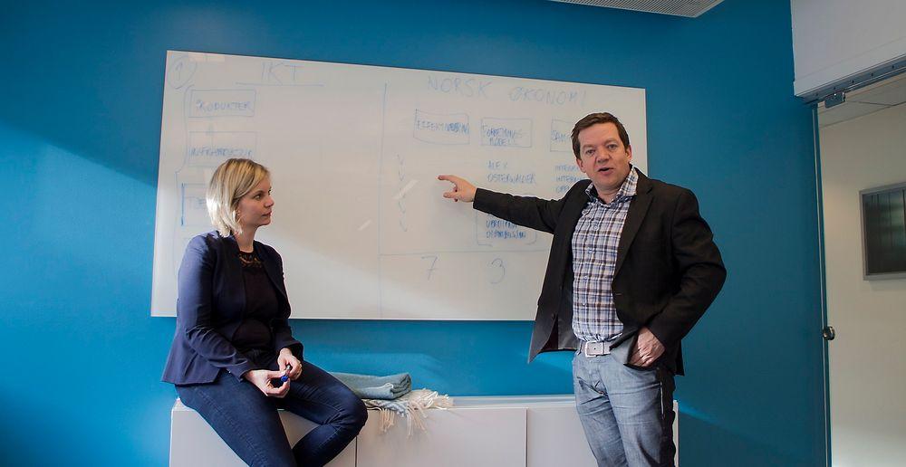 IT-Norge under lupen: Sigrun Aasland i Damvad og Tarje Bjørgum i Abelia skal finne ut hvordan it-bransjen er satt sammen, og hva den betyr for utviklingen her i landet.