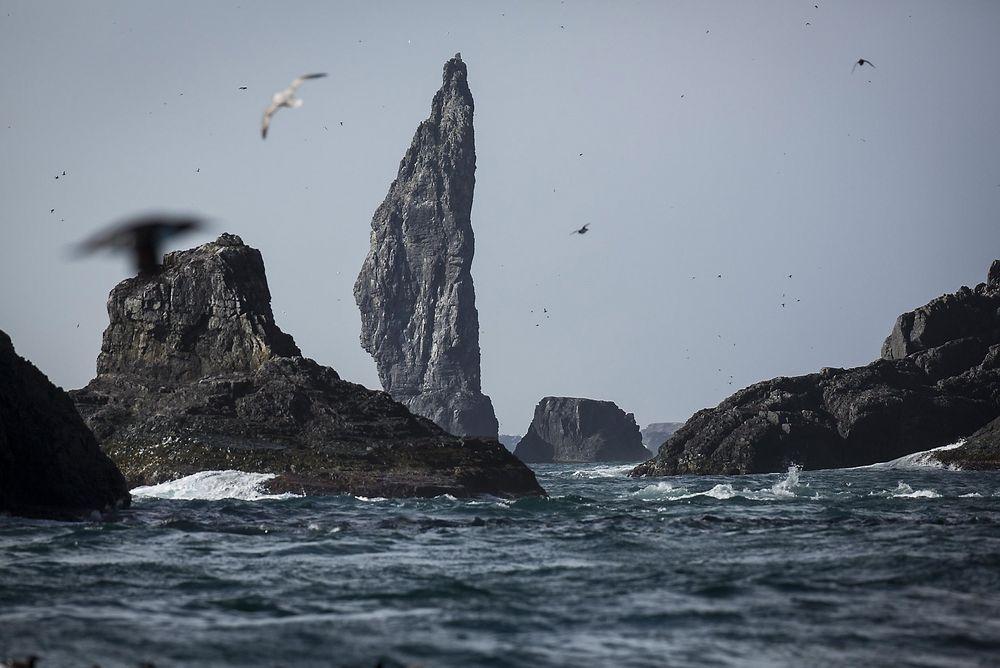Greenpeace mener det er fare for at utslipp fra Apollo-brønnen kan nå naturreservatet på Bjørnøya. Miljødirektoratet har nå tatt en klage fra miljøorganisasjonen videre, og Statoil må vente med å bore til saken er avgjort.