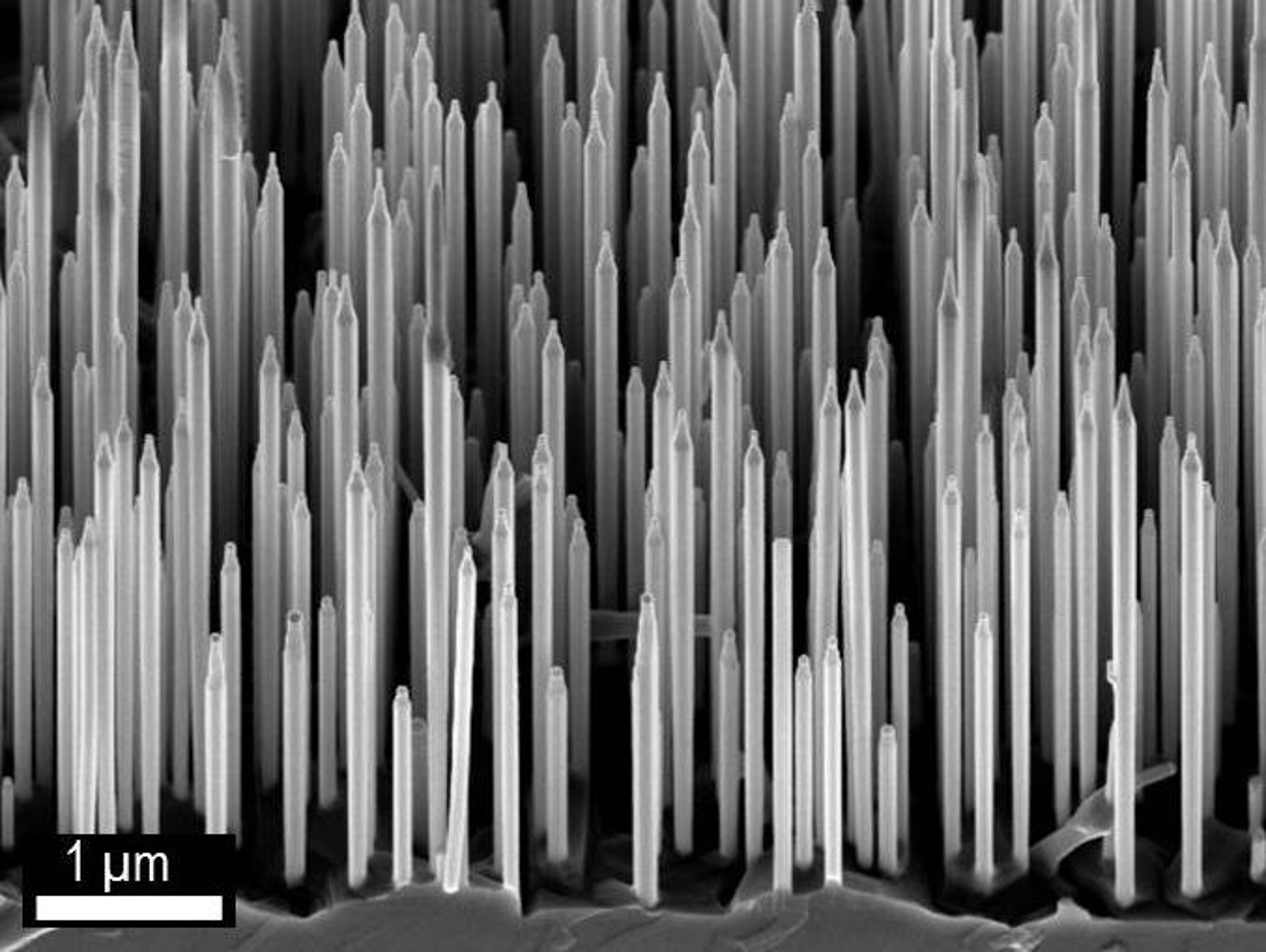 Elektronmikroskopi-bilde av wurtzite GaAs / AlGaAs nanotråder.