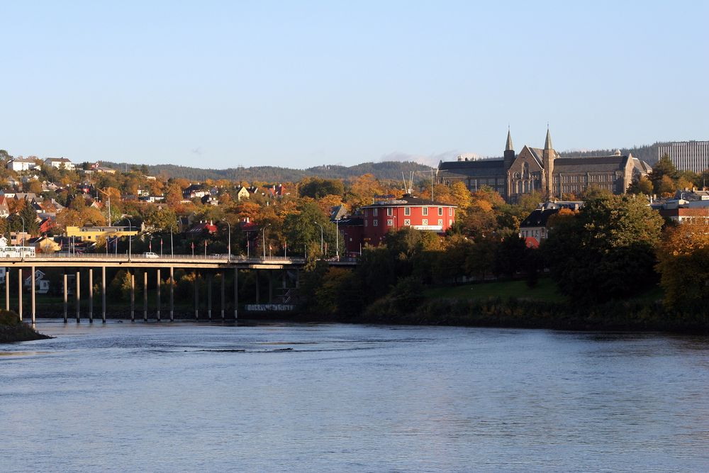 Om Trondheims byplansjef får det som hun vil kan det nye NTNU-campuset bygges i tre.