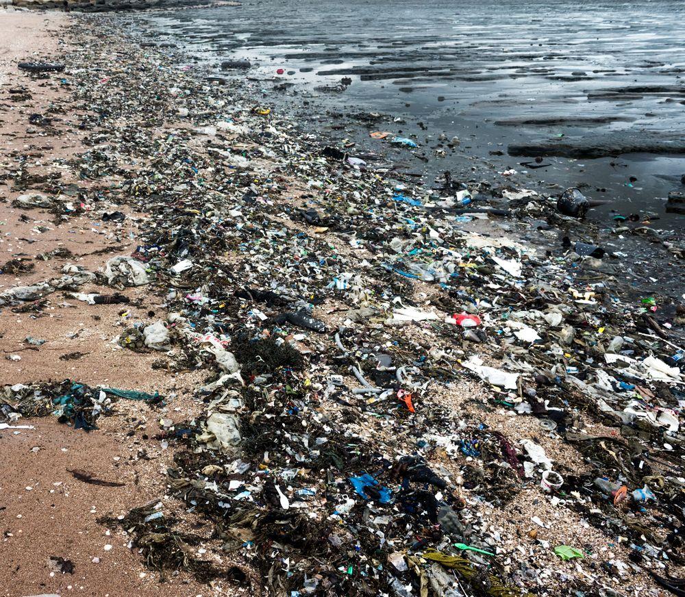 Ny app for søppeljegere: Finner du mye søppel langs stranda, kan du nå registrere alt fra plastikkgjenstander, sigarettstumper, flasker og fiskeutstyr i den nye appen LitterWatch.