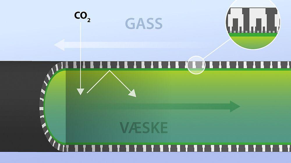 NTNU får penger av Climit til et prosjekt der membran sammen med en absorbent, en membrankontaktor, skaper svært stor kontaktflate mellom gass og væske og dermed rask fangst av CO2.