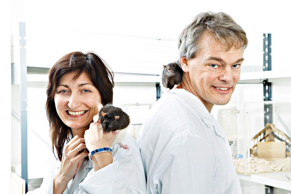 Professorene i nevrovitenskap Edvard og May-Britt Moser har fått nobelprisen i medisin for sin forskning på gridceller i hjernen.