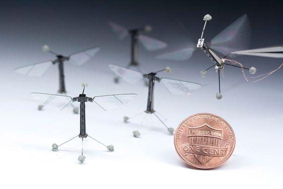Robert J. Wood var student på universitetet da han satte seg som mål å lage en flygende robot etter modell fra insektverden. Fluer og bier er noen av naturens sprekeste luftakrobater, og det er populært blant forskere å hente ideer med inspirasjon fra naturens velutviklede mekanismer.