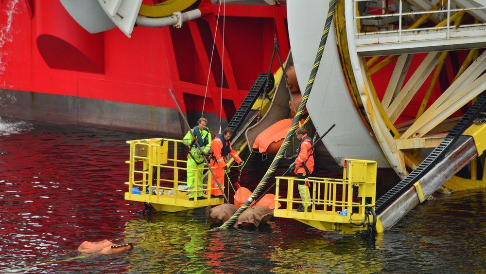 kabelfløting utenfor Kristiansandkabel skagerakkraftkabelSkagerak-kabelen føres i land