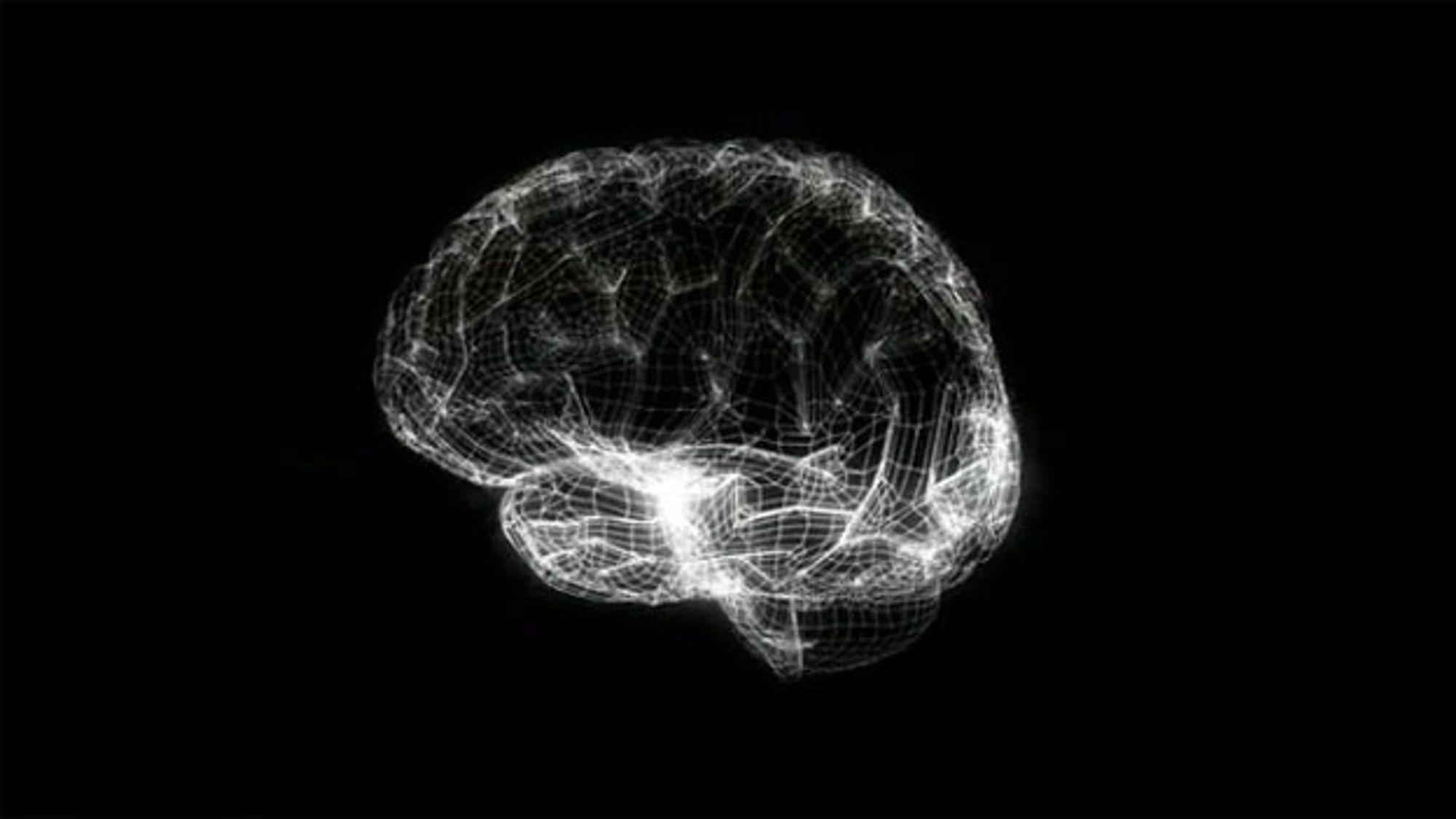 EU-kommisjonen bidro nylig med rundt 8,8 milliarder kroner til Human Brain Project, EUs nye flaggskip for framtidens teknologi.