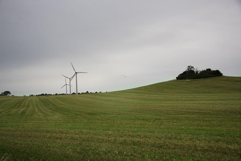 ABB har vunnet en kontrakt om å koble vindkraftprosjektet Pen y Cymoedd, den største landbaserte vindparken i England og Wales, til nettet.
