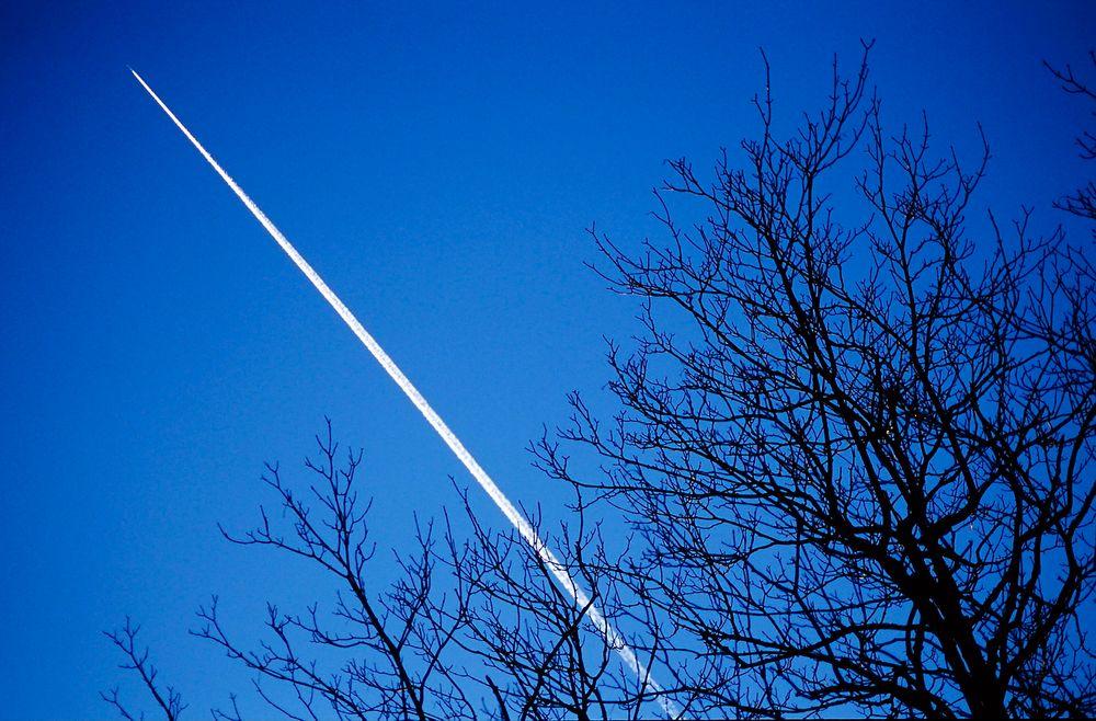 I fremtiden kan norsk skog bli flydrivstoff.