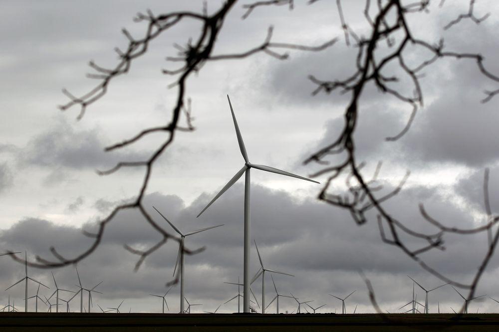 Kutt i subsidiene til fornybar energi i Europa har rammet norsk fornynæring.