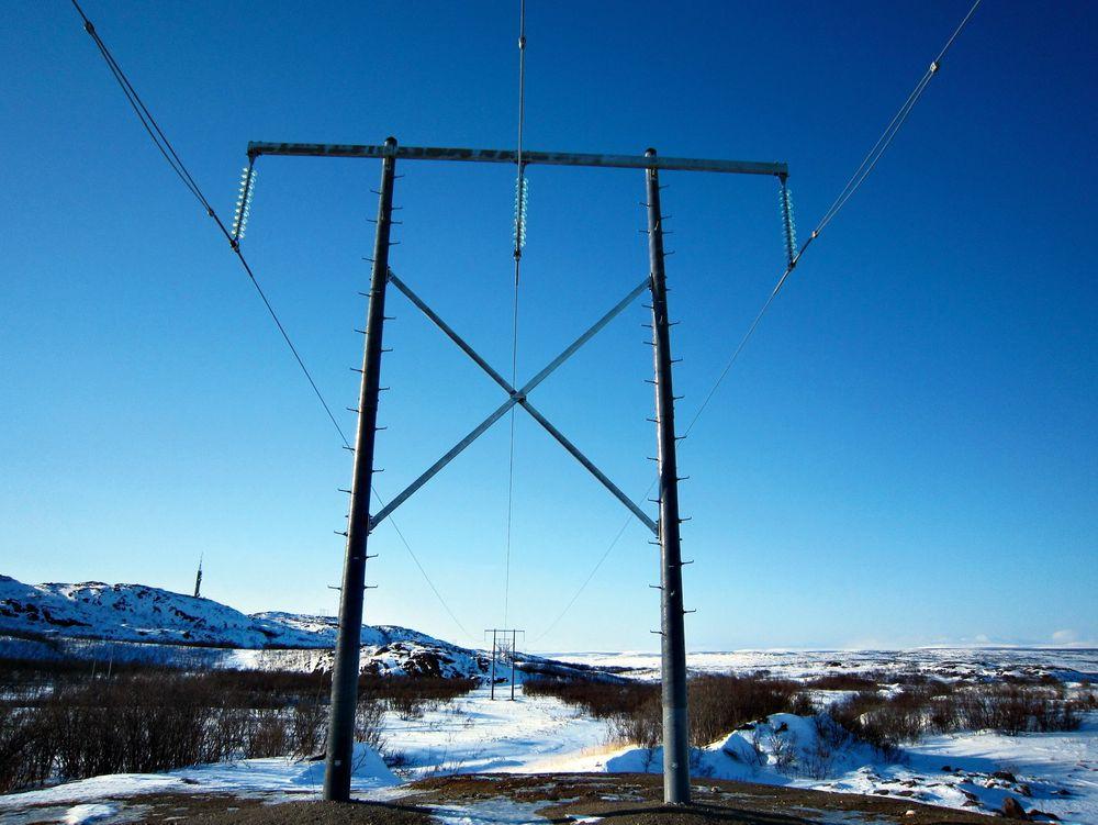 «Vedlikeholdsfritt»: Med komposittmaster slipper nettselskap å forholde seg til råteskader og skader fra stokkmaur og hakkespett. Men Statnett har foreløpig ingen planer om å bruke komposittmaster på høyere spenningsnivå enn 132 kV. ⇥Foto: Melbye