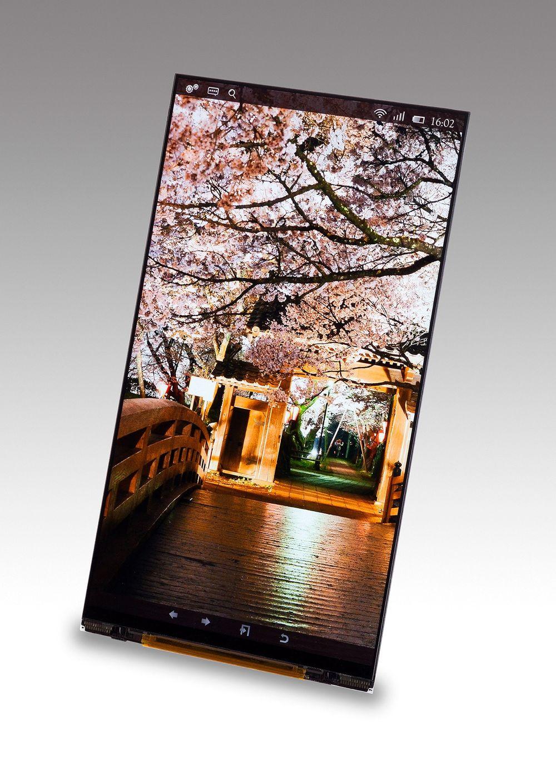 Superskjerm: 3,7 millioner piksler fordelt over 5,4 tommer er ny rekord. Kankje vi ser en slik i en mobiltelefon det nærmeste året.