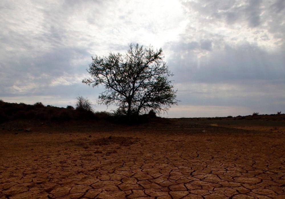 Klimapanelet advarer mot at verdens matproduksjon vil gå ned med 2 prosent på grunn av global oppvarming. Bildet viser et uttørket vannhull i Karoo i Sør-Afrika der lokalbefolkningen frykter at såkalt fracking, eller utvinning av skifergass, skal minske vannforsyningene og ødelegge den skjøre balansen i landbruket.