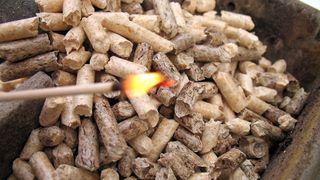 Frykter nye byggregler blir drepen for biovarme