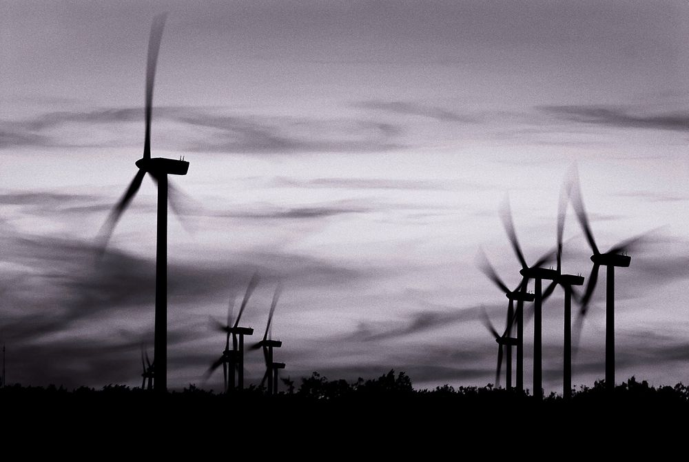I Italia har mafiaen utnyttet statlig subsidiering av fornybar energi.