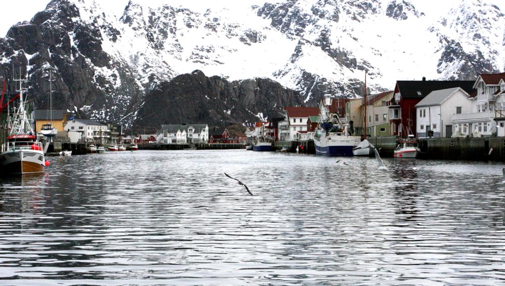 Flere nordlendinger er for oljeboring i Lofoten og Vesterålen enn i fjor, men fortsatt er nesten halvparten mot.