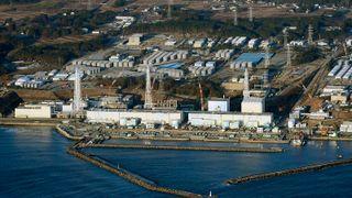 Oppstart av japanske reaktorer gir optimisme i Halden