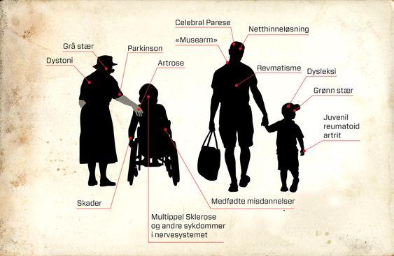 I målgruppen: Titusenvis av arbeidssøkende funksjonshemmede er potensielle brukere av talegjenkjenning på norsk. Potensielle brukere finnes innenfor grupper med sykdommer i nervesystemet, i øyet, muskel- og skjelettsystemet, bindevevet, medfødte misdannelser, skader og personer med lese- og skrivevansker.