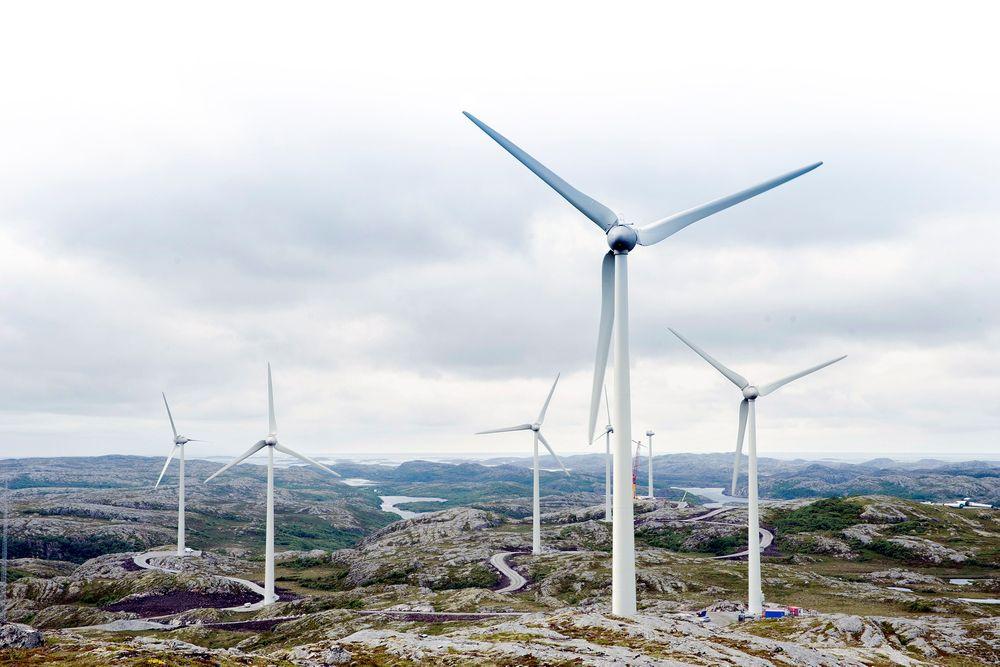 Skeptisk: NTE tviler på at hydrogenproduksjon på Ytre Vikna kan redusere behovet for investeringer i nettet. Foto: NTE Holding