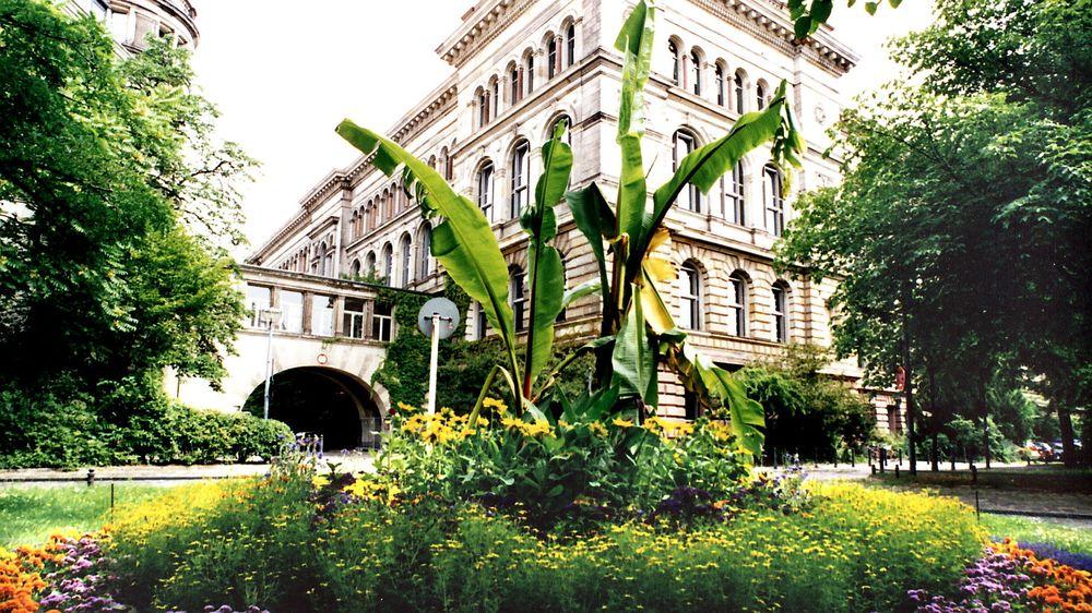Tyskland er førsteønsket til NHO når det gjelder hvor norske studenter skal reise på studieopphold. Her fra Technische Universität Berlin.