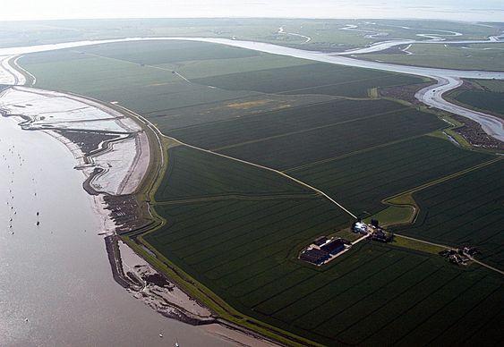 Wallasea Island består i dag nærmest utelukkende av dyrket mark. Om noen år skal det bli en av Europas største våtlands-naturreservater - blant annet ved hjelp av 4,5 millioner tonn overskuddsmaterialer fra nye jernbanetunneler i London.