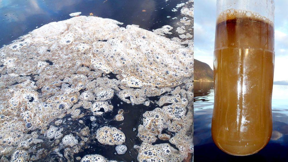 Fiskerne som oppdaget oljeutslippet møtte synet av denne skummende hinna på vannet. Til høyre hvordan sjøvannet så ut etter hoggingen av lastebøyen.
