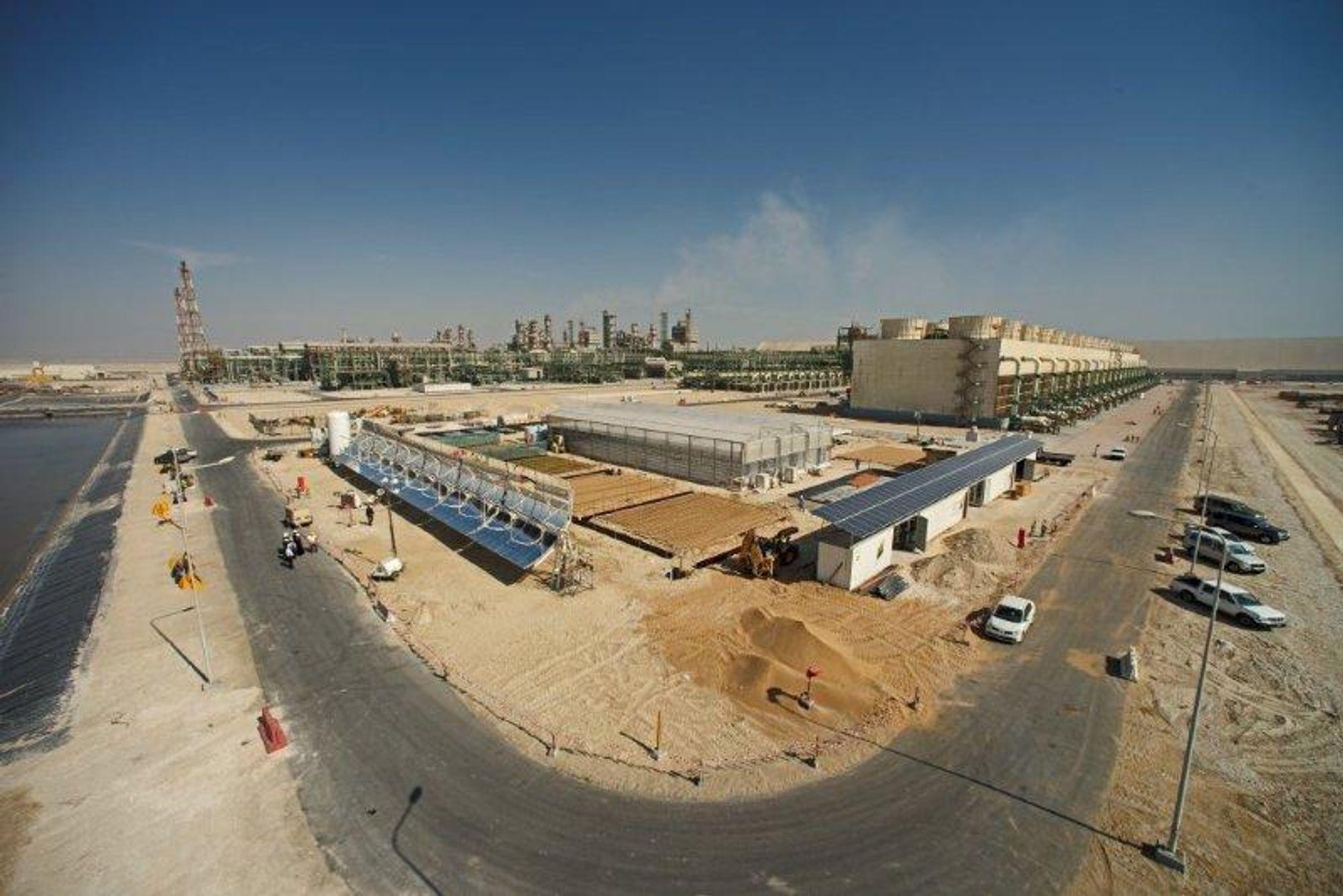Sahara Forest Project kunne i dag servere sine først agurker.