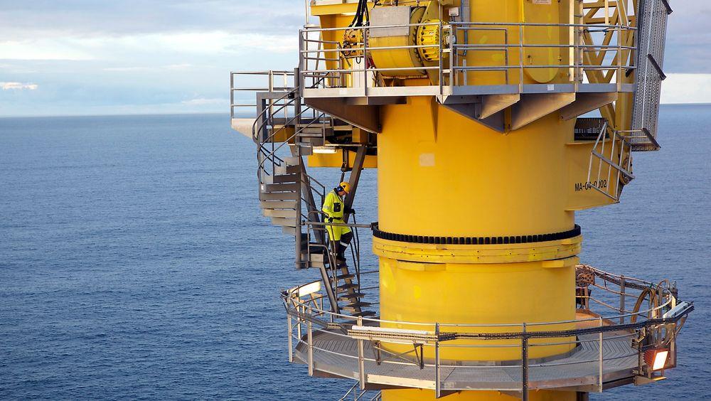 Statoil og medeierne har gjort et nytt oljefunn nær Grane-feltet.