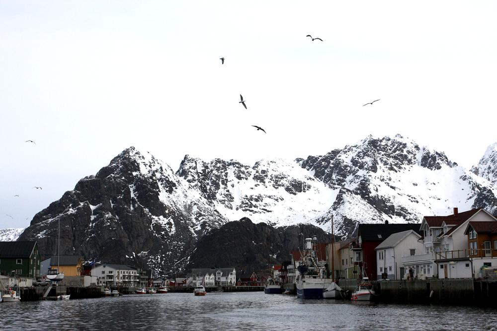Fiskeskøyter dominerer på bilder fra fra Lofoten og Vesterålen, men det kan bli forsyningsskip om det først settes i gang konsekvensutredning.