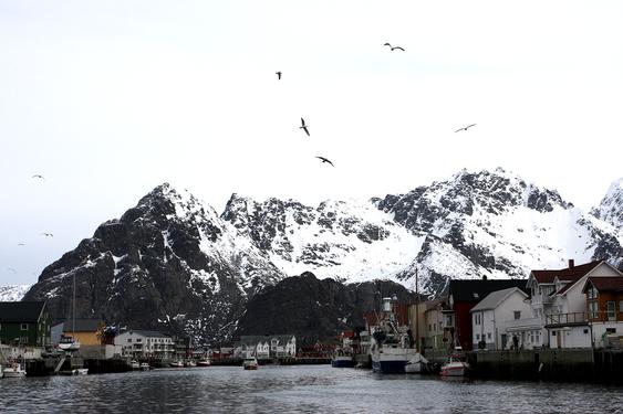 HOVEDPULSÅREN: 55 000 innbyggere i Lofoten og Vesterålen er avhengige av Lofotringen. - Det er et stort samfunnsansvar for et lite selskap, sier adm. direktør i Trollfjord Kraft, Jacob N. Jacobsen.
