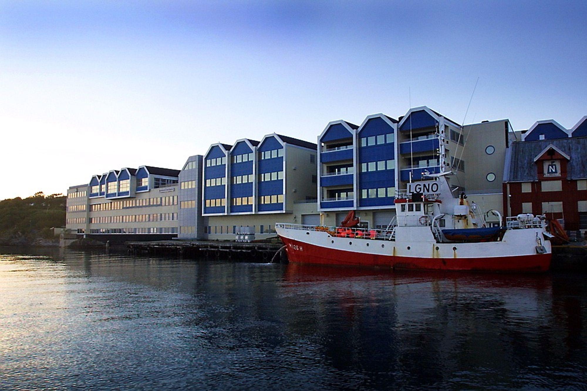 ALTINN i BRØNNØYSUND: Idylliske omgivelser, trøbbel i systemet. Foto: Gorm Kallestad / SCANPIX