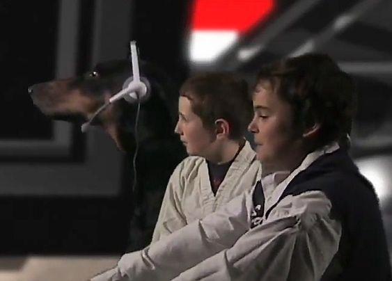 HELTER: F.v. Chewbacca, Luke Skywalker og Han Solo, ombord på romskipet Millennium Falcon.