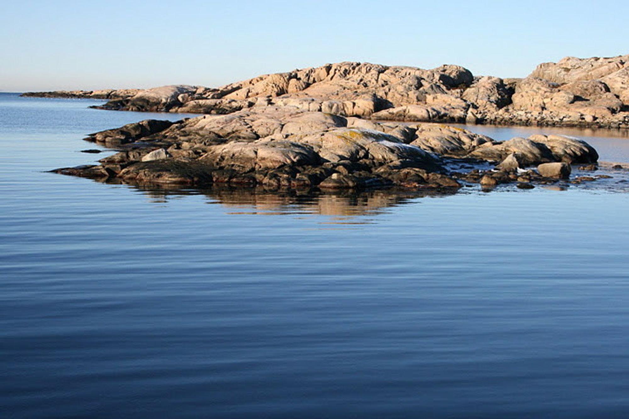 URØRT NATUR: Ytre Hvaler nasjonalpark er stort og relativt urørt naturområde med komplette økosystemer i sjøen og på land. Derfor bør det ikke bygges høyspentkabel der, mener parkens styre.