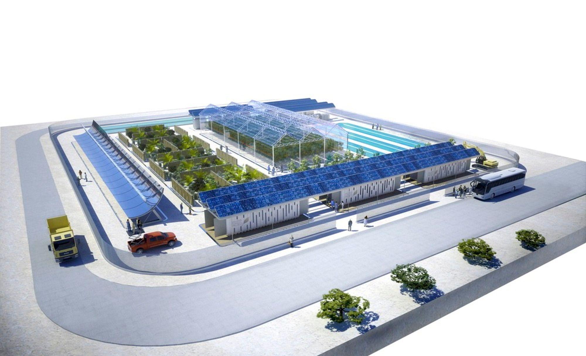 I anleggets spesielle drivhus skal saltvannet sørge for kjølige og gunstige vekstvilkår for grønnsaker.