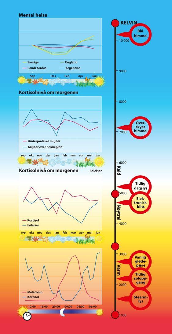 1: Mens solrike land er den mentale helden jevn over året, men den varierer med lysintensiteten i de nordlige. 2: Arbeidsplassen har mye å si for kortisolnivået. De som arbeider under bakken har ikke så stor effekt av årssvingningene i lysforholdene. 3: Nivået av kortisol har stor betydning for følelseslivet. 4: Nivåene av melatonin og kortisol svinger motsatt gjennom døgnet og sørger for at vi sover og holder oss våkne.