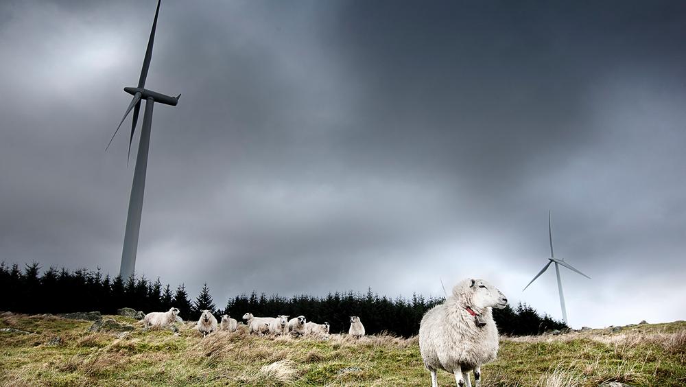 Høg-Jæren Energipark har produsert 18 prosent mer strøm enn det som var ventet.