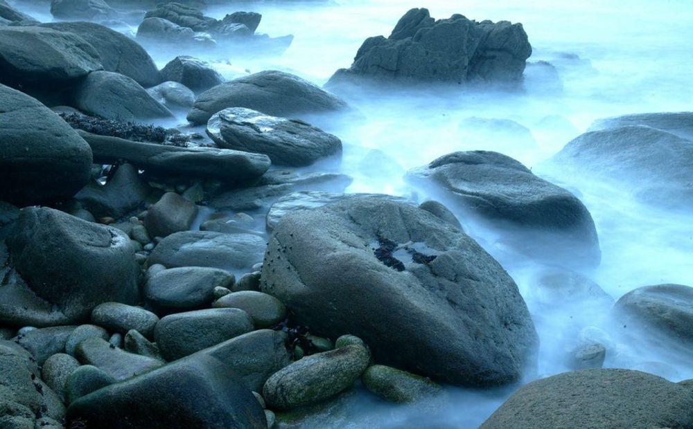 ALVORLIG: Havforsuring kan utvikle seg til en alvorlig utfordring for livet i havet.