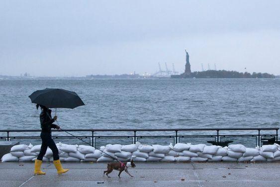 BATTERY PARK: Denne dama benytter anledningen til en siste luftetur med hunden før orkanen sprer seg i gatene.