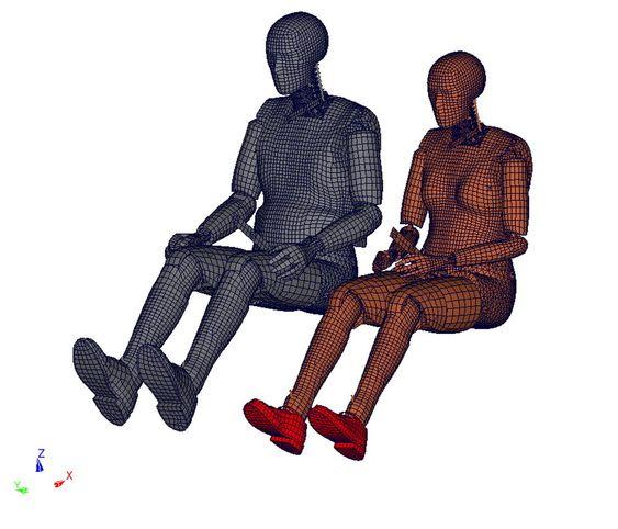 Krasjtestdukkene BioRID (f.v) og EvaRID representerer henholdvis en gjennomsnittlig manns- og kvinnekropp.