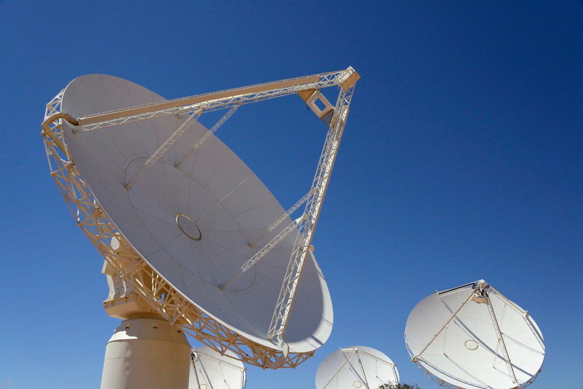 ENORMT: Gigantiske parabolantenner rettes mot himmelen ved Murchison nord for Perth i det vestlige Australia. Fredag ble 36 slike antenner, hver med en diameter på 12 meter, satt i drift som ledd i et prosjekt som skal skaffe forskere ny kunnskap.