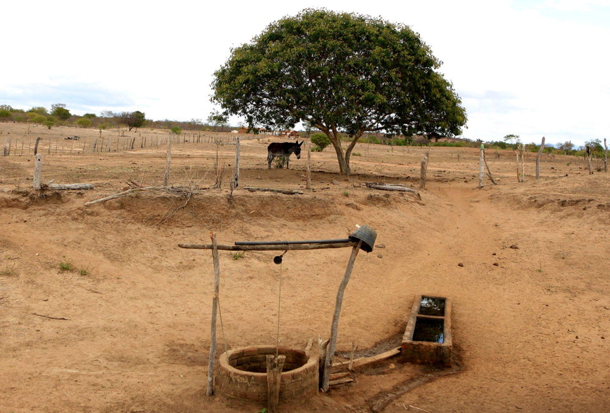 En brønn i den brasilianske delstaten Bahia, som er rammet av den verste tørken på 30 år. Neste måned arrangerer FN en stor miljø- og utviklingskonferanse i den brasilianske storbyen Rio de Janeiro.