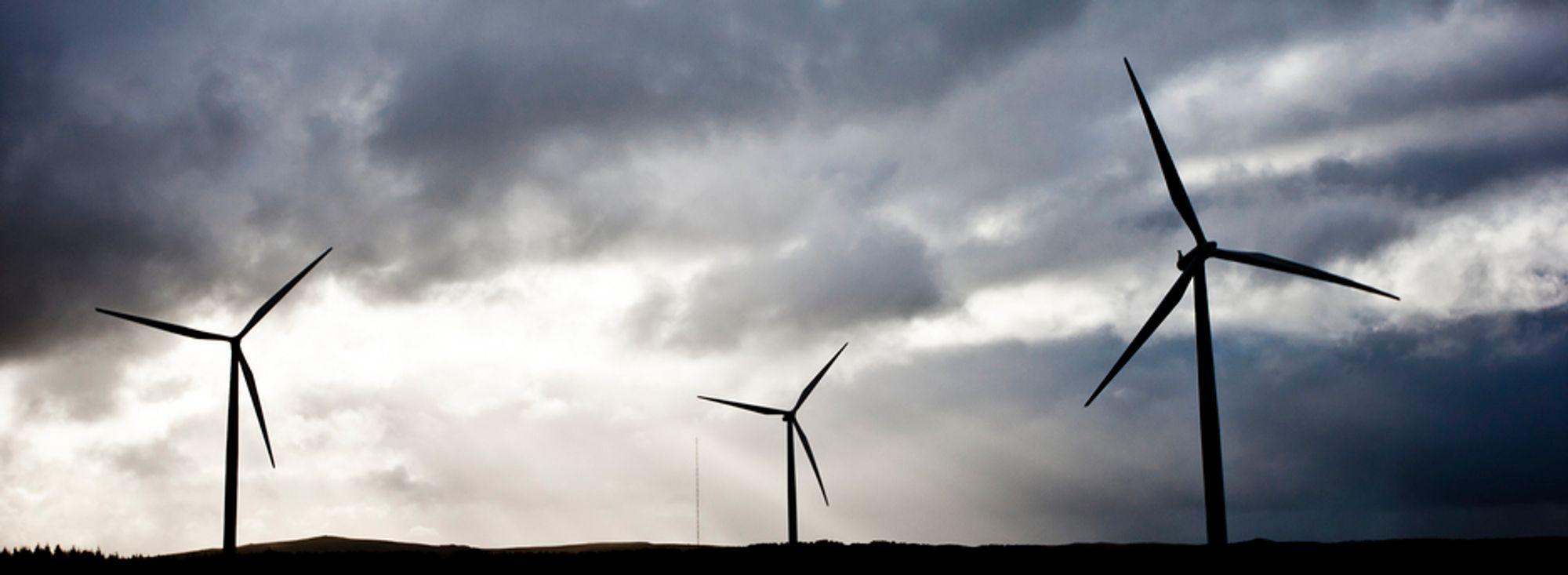 Treg saksbehandling av vindkraft: Kan flytte utbygging til Sverige