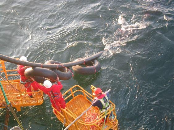 NorNed - kabel mellom Norge og Nederland