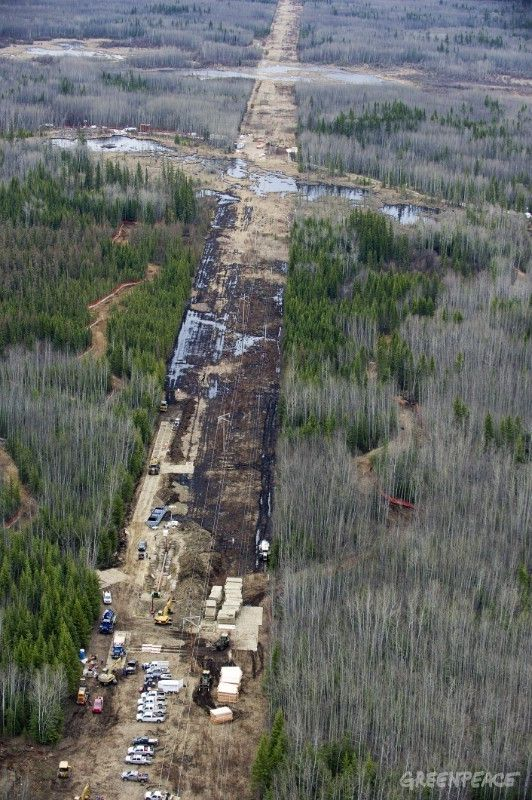 May 5, 2011 - Evi, Alberta, Canada - Crews work to clean up at Rainbow Pipeline's oil spill, the worst Alberta oil spill in 35 years, dumping 28, 000 barrels of oil into a wetland area at Evi, Alberta which is near Little Buffalo, Alberta, Canada. Rainbow Pipeline is owned by a Canadian subsidiary of Houston-based Plains All American Pipeline L.P. PHOTO BY ROGU COLLECTI / GREENPEACEPHOTO CREDIT MUST BE INCLUDEDONE TIME USE DO NOT ARCHIVE 28.000 fat olje har lekket ut i et indianerreservat i Alberta, Canada.