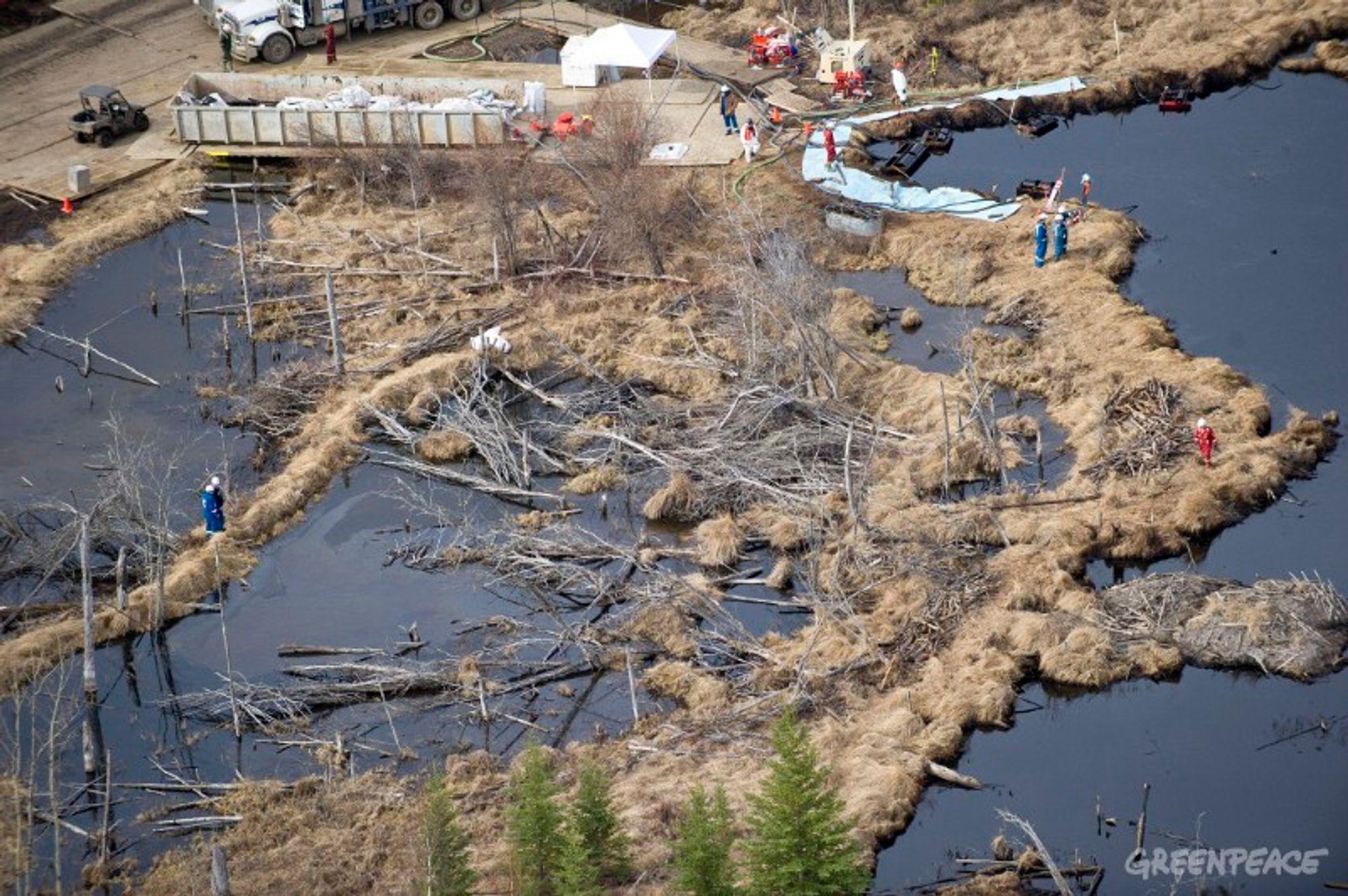 OMFATTENDE: Oppryddingsarbeidet etter det verste oljeutslippet i Alberta på 35 år er i gang.