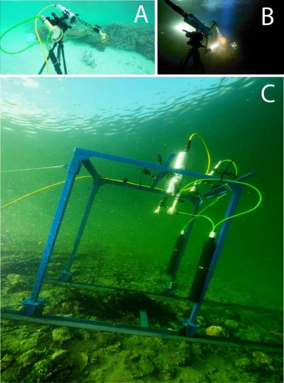 Ecotone - kamerateknologi for undervanns miljøovervåkning.  Kamera greier å se forskjell på  olje, sand, koraller og forurensning under vann.  A er fra testing av optisk sensor på Great Barrier Reef i Australia i januar 2011, B er fra testing av optisk sensor i Grønlandshavet i januar 2010, C er fra testing av optisk sensor i Hopavågen i Norge i April 2010.
