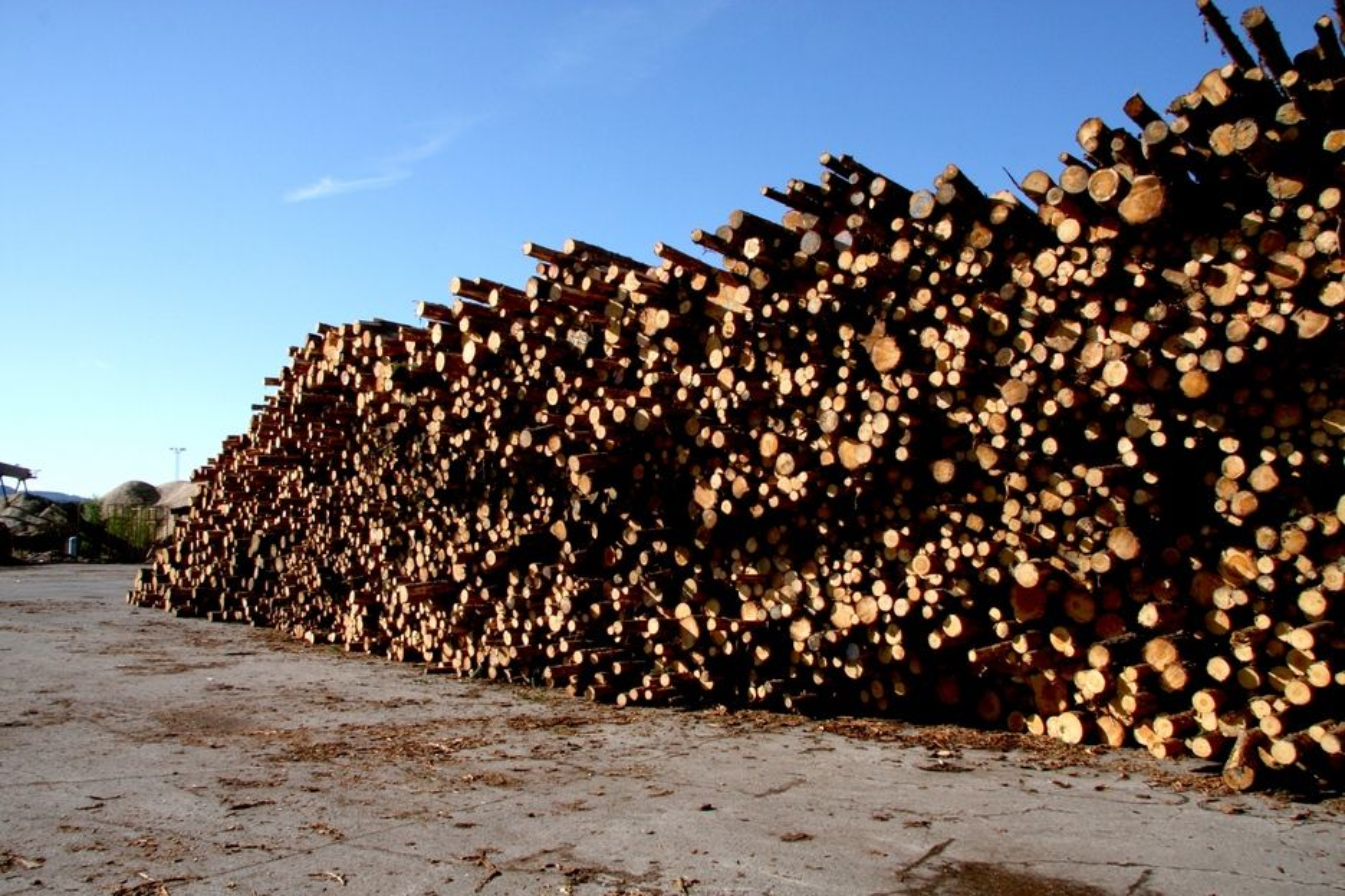 GIR CO2-UTSLIPP: Bioenergi er ikke helt klimanøytralt. Utslipp av ett kilo CO2 fra norsk skog tilsvarer 430 gram CO2 fra fossil energi i et hundreårsperspektiv og 80 gram fossil CO2 i et femhundreårsperspektiv, viser beregninger fra NTNU, Cicero og Universitetet i Oslo.