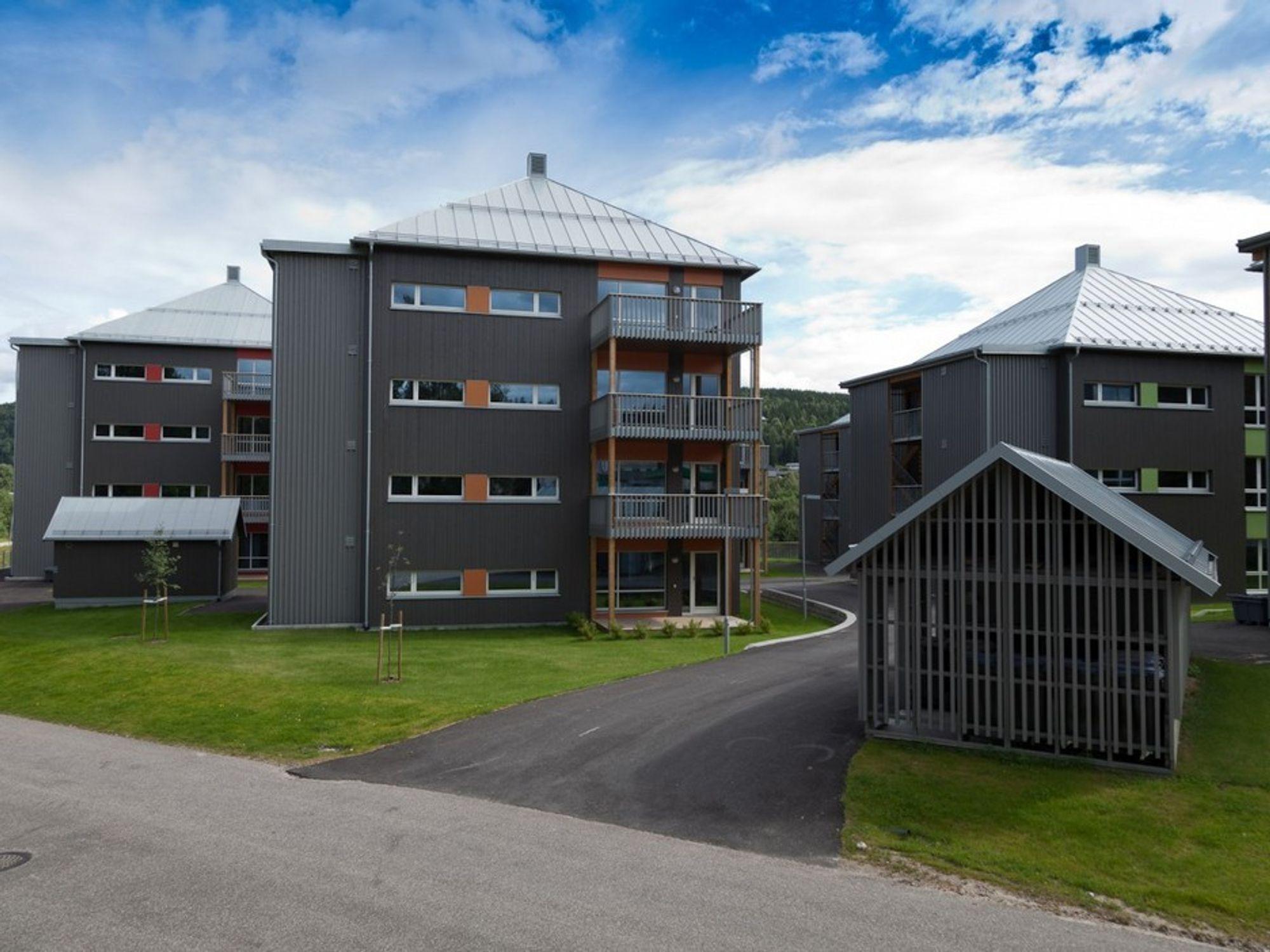 HELTRE: Idrettsparken boliger på Rena har fasader av heltre, sydendte balkonger og felles grønarealer.