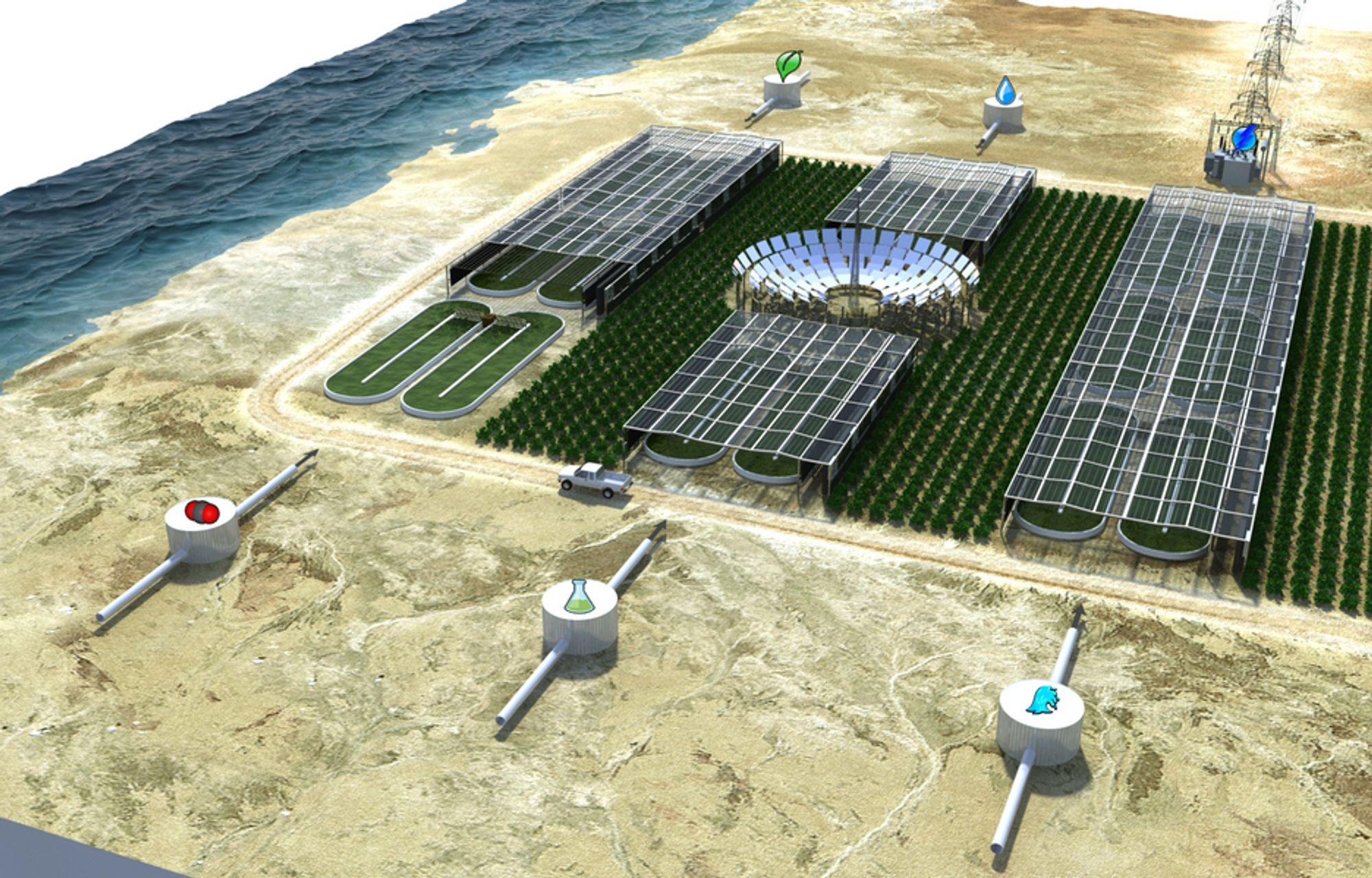 """""""Algefabrikken"""" til Bellona slik den er tenkt i Sahara. Nå står Qatar for tur."""