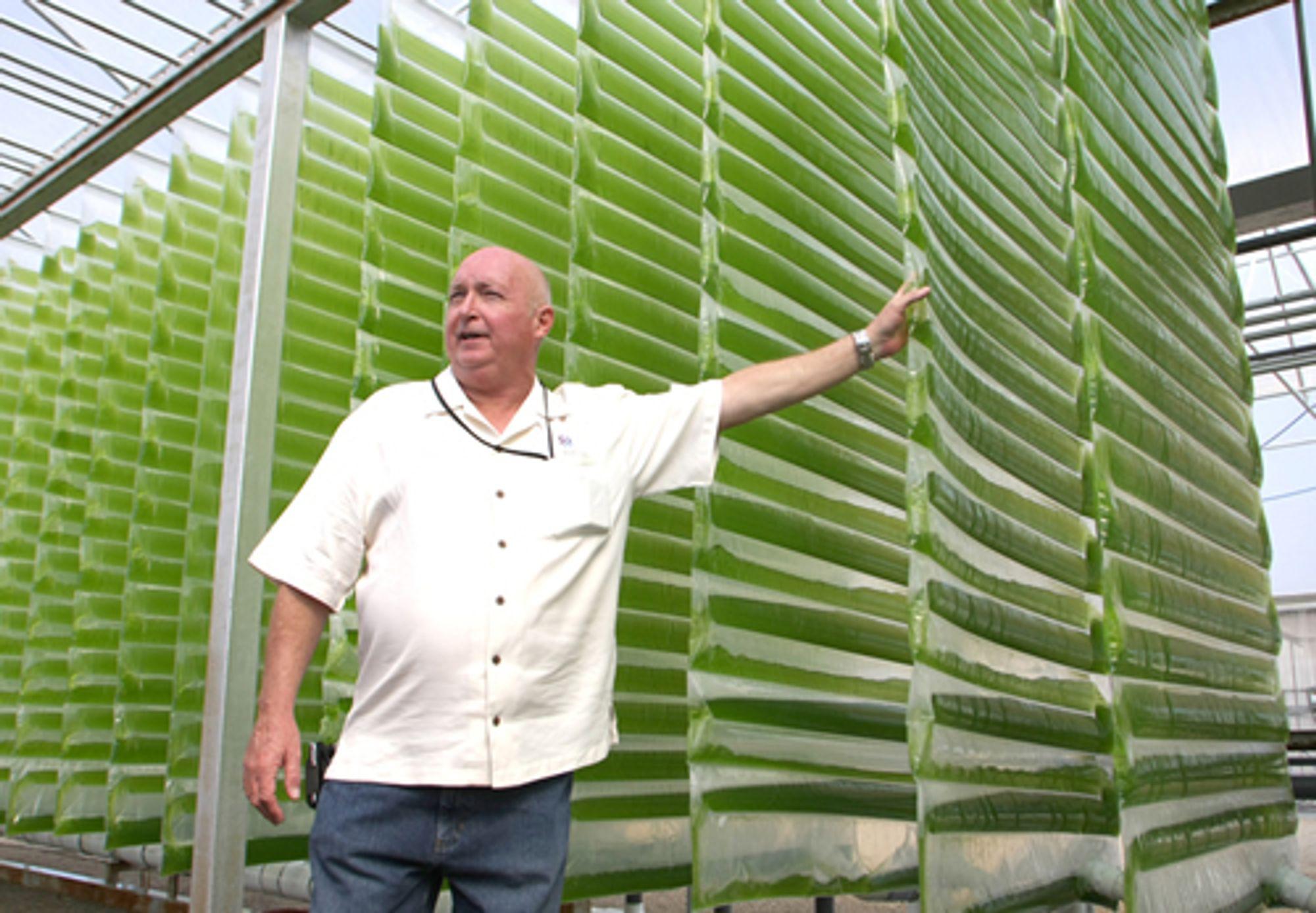 LUKKET SYSTEM 1: Alge-gründer og direktør Glenn Kertz i selskapet Valcent viser fram algefylte bioreaktorer ved selskapets forsknings- og produksjonssted i El Paso, Texas.