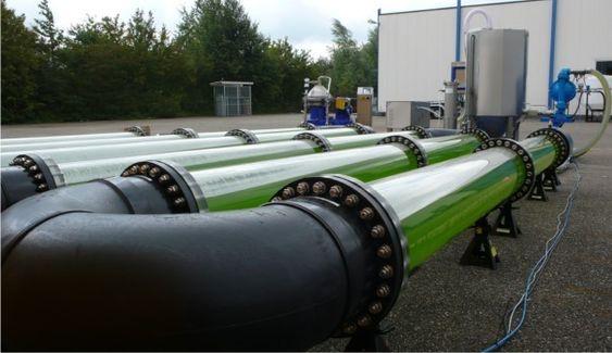 En prototyp av nedrlandske Algaelinks fotobioreaktor ble stilt ut under Biodiesel Expo 2007 i Nottingham England.